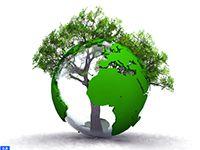 Nghề nghiệp thuộc nhóm ngành STEM - Khoa học môi trường