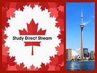 Chương trình Study Direct Stream – SDS