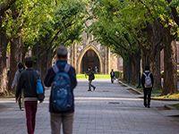 Top 5 trường đại học tốt nhất tại Nhật Bản